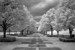 Nelson-Atkins-Museum-Grounds